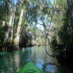 Kayaking Crystal River