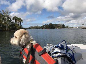 Freedom Boat Club Crystal River