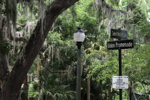 Sweetwater Park in Downtown Gainesville FL