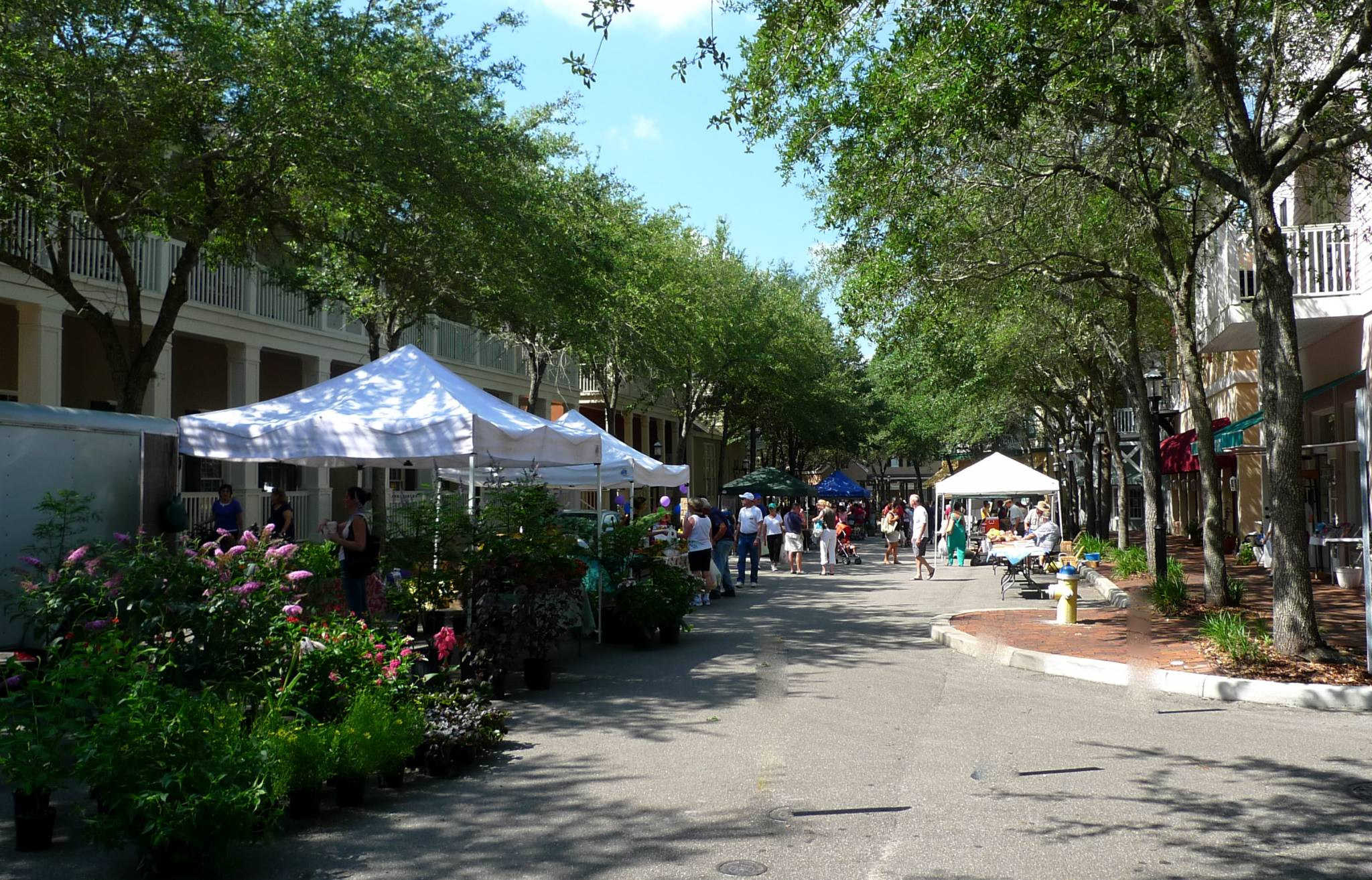 Haile Village Center farmers market