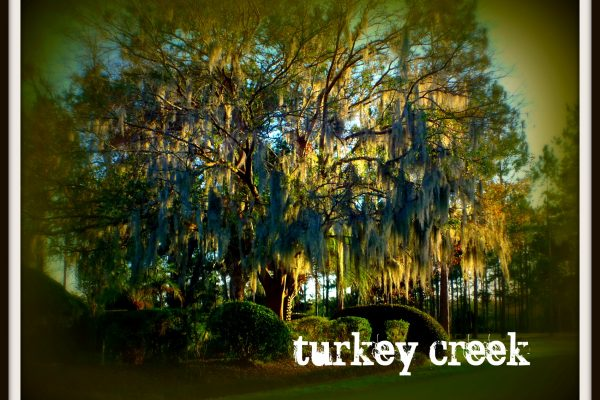 Turkey Creek neighborhood