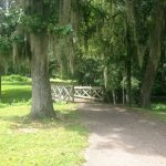 Turkey Creek neighborhood Alachua FL - view of bridge